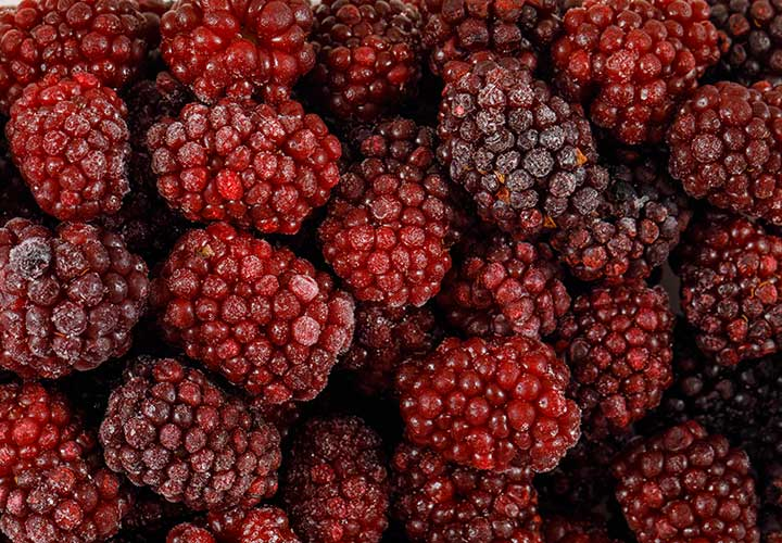 Benefits of Mulberry Also Known as Shahtoot