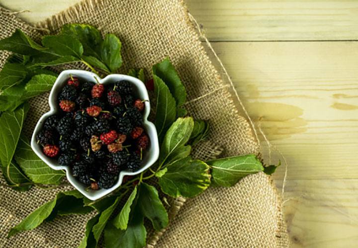 Home Remedies Using Shahtoot or Mulberry Fruits