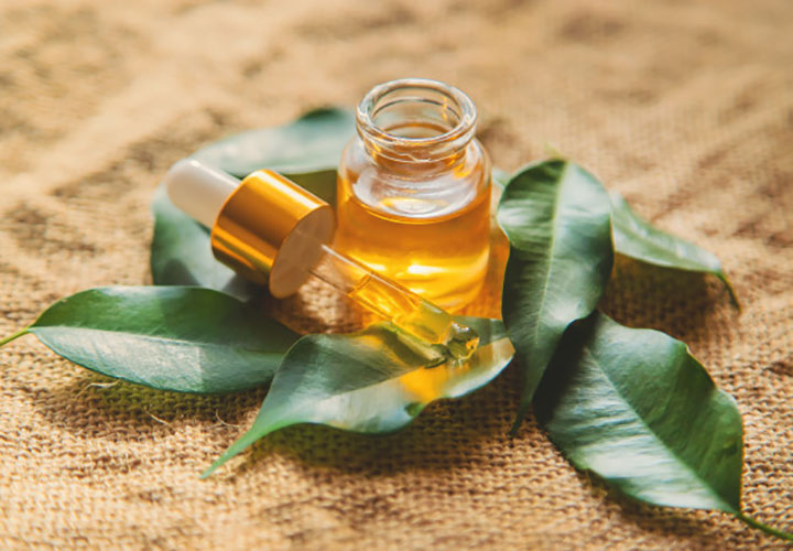 Tea Tree Essential Oil is Effective Against Dandruff