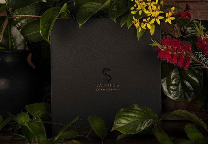sadhev skincare and haircare products