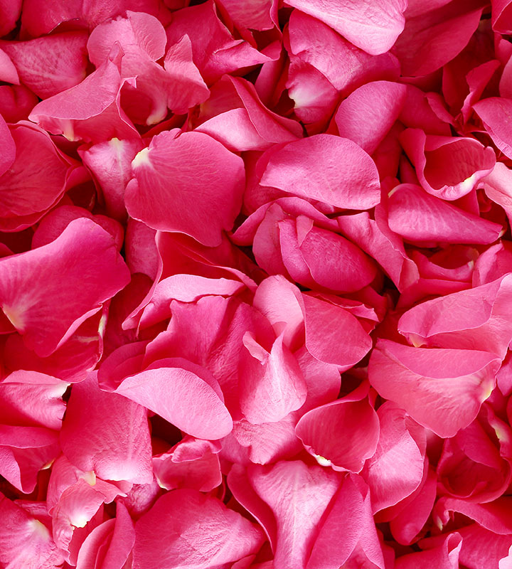 How to Choose the Purest Rose Petals Powder