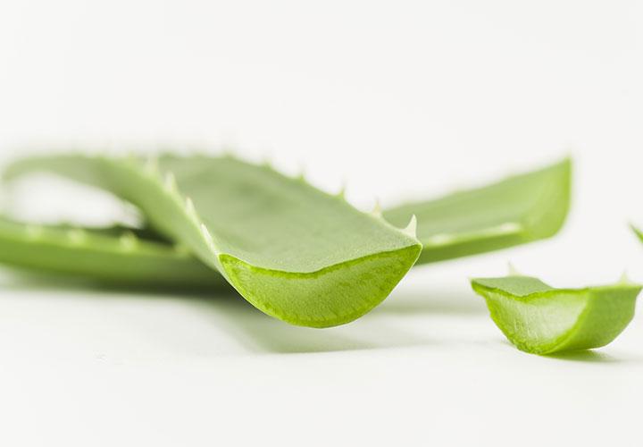 Rejuvenating Face Pack Recipe using Aloe Vera Gel, Honey, and Rose Petal Powder